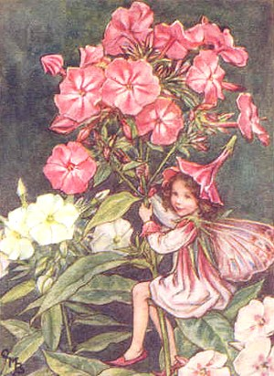 The Healing Power of Flowers and Fairy Blessings ...
