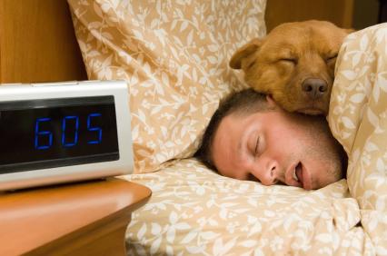Image from www.sleepsurvey.net.au