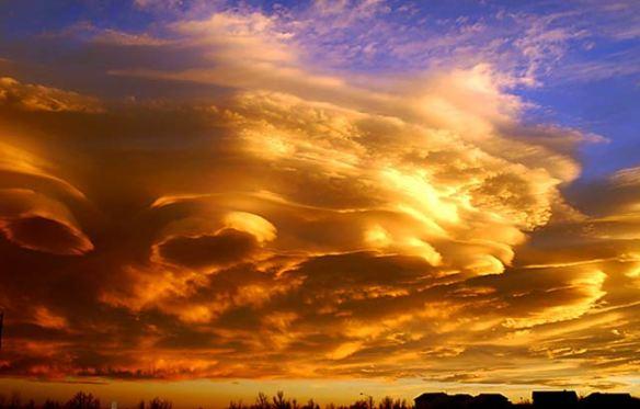 Image from www.flatrock.org.nz