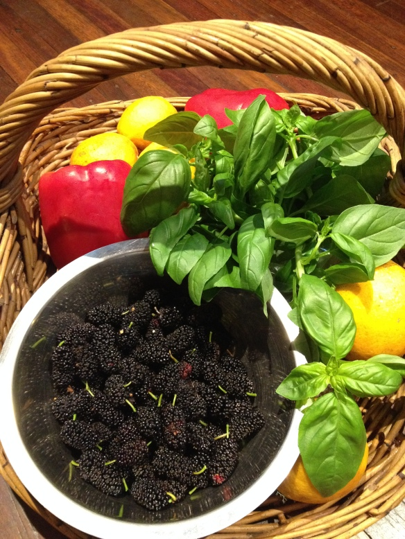 The basket of garden harvest which inspired our lunch menu