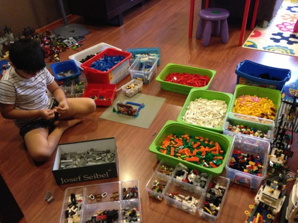 Reese Matthews beginning a grand Lego project