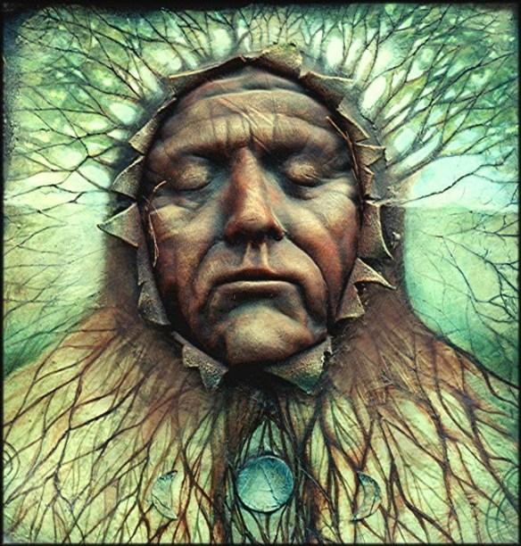 Gaia Shield by Duncan Eagleson