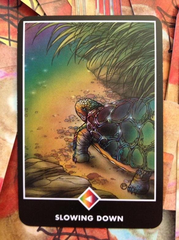 sunmar10card