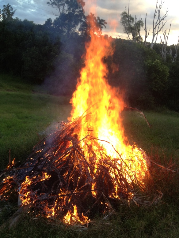 bonfire front paddock