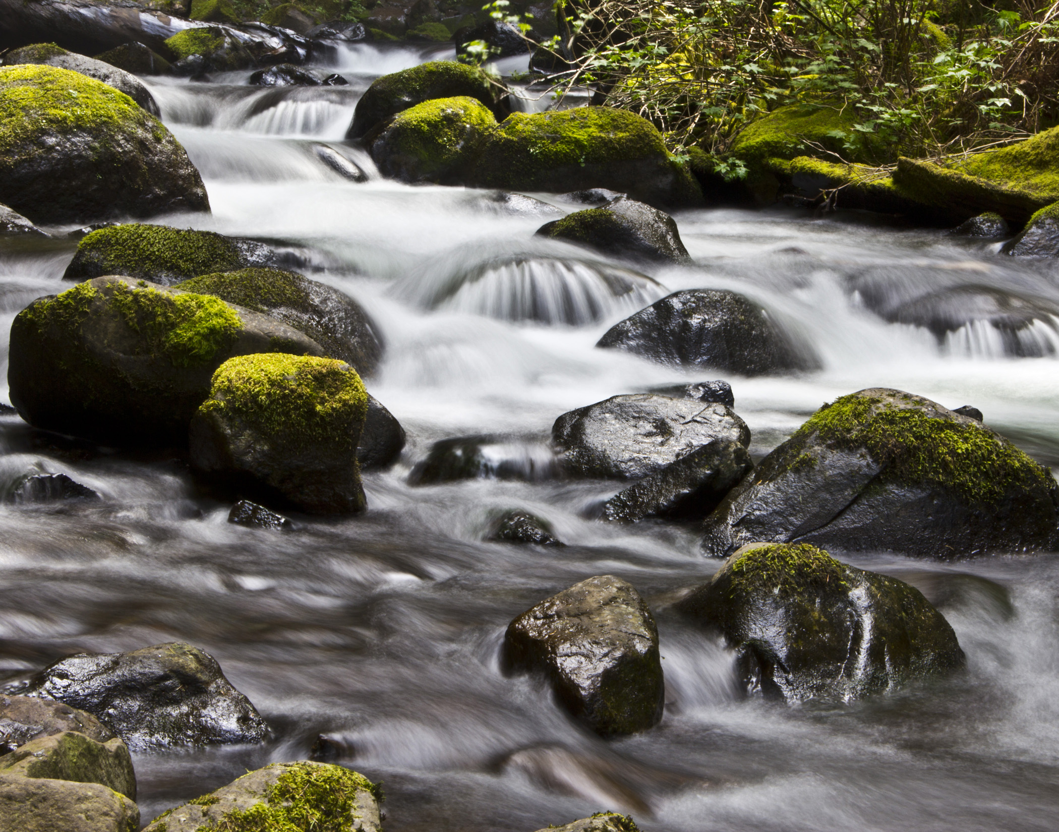 Water Oracle – For Embracing Opportunity | Cauldrons and