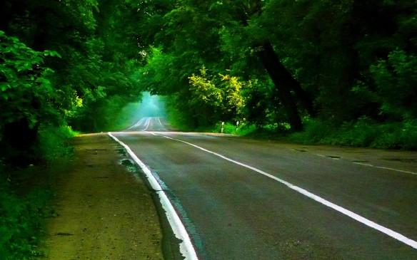 Image from cz.forwallpaper.com
