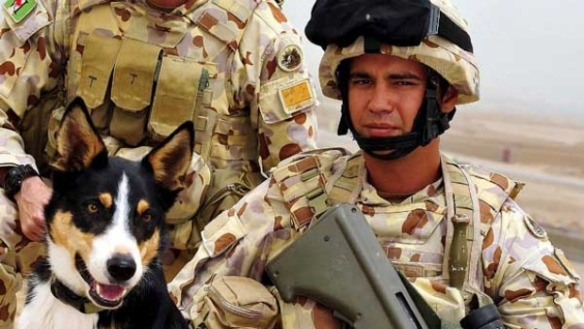 Sapper Darren Smith and his explosive detection dog, Herbie, who were killed in Afghanistan in 2010 - image from www.smh.com.au