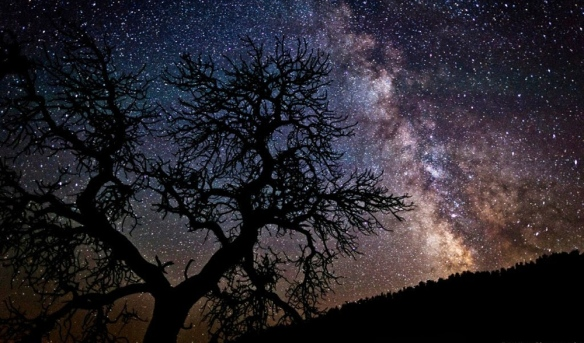 Night Sky by Eric Hines
