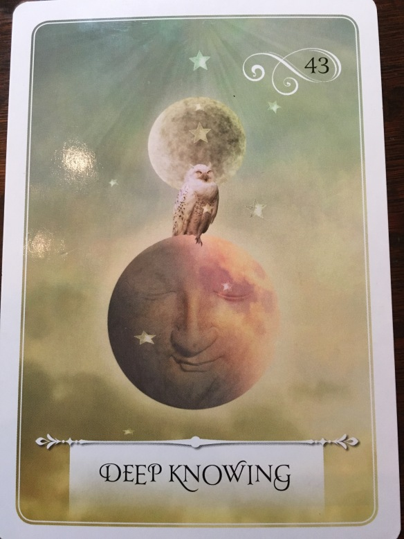 Deep Knowing Oracle Card - from Wisdom of the Oracle Deck by Colette Baron-Reid