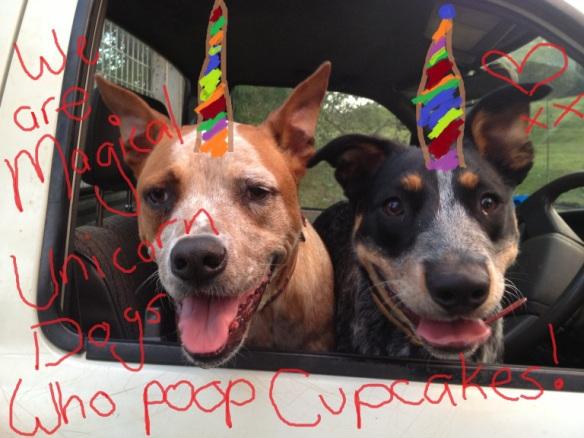unicorn-dogs